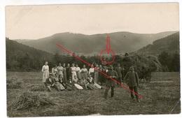 Vosges-Allarmont? Ernte Einheimische 1-2 - Aus Album 1.Landwehr Division -carte Allemande Photo-1914-1918 WWI - France
