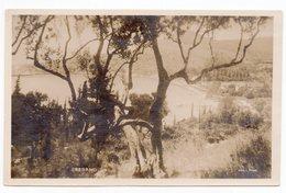 1926 KINGDOM OF SHS, CROATIA, SREBRENO, OLIVE, BEACH,KUPARI,DUBROVNIK, ILLUSTRATED POSTCARD, MINT - Croatia