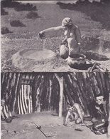 Lot De 14 Cartes + 1 Enveloppe - INDIENS  - The American Museum Of Natural History NEW-YORK - Indiens De L'Amerique Du Nord