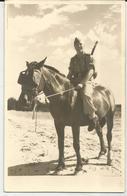 FOTO DI MILITARE A CAVALLO    -FG - Militari