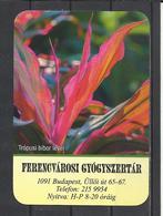 Hungary, Tropical Purple Leaf(?), Pharmacy Ad,  2020. - Kalenders