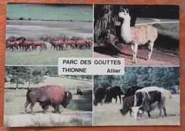 Parc Des Gouttes - Thionne - Allier : Cerfs, Lamas, Bisons, Yacks - 1980 - Autres Communes