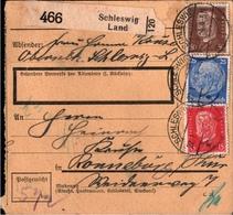 ! 1934  Paketkarte Deutsches Reich, Schleswig Land Nach Ronneburg - Germania