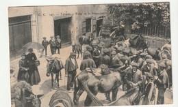 Tardets ( Pyrénées Atlantiques) Foire De La Pentecôte / Anes, Mules, Chevaux - Francia
