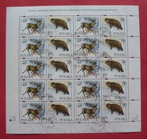 Poland 1999 - Postally Used - Sheet Fi 3639/40 - Fauna Animals, Joint Issue With Ukraine - Pologne Polen --- 409 Bl - Blocs & Feuillets