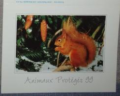 Petit Calendrier De Poche 1999 écureuil Animaix Protégés Choisy Le Roi - Calendarios