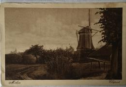 Elspeet (Gld.) Molen 1929? - Pays-Bas