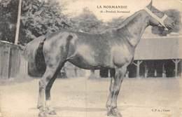 20-858 : LA NORMANDIE. PRODUIT NORMAND. CHEVAL.  EDITION CPA A CAEN. - Sapeurs-Pompiers