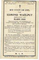Doodsprentje - WAELPUT Edmond (x M. Ego) - Veldwachter - °MERENDREE 1867 En Overleden LOTENHULLE 1925 - (FOTO) - Images Religieuses