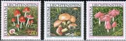 LIECHTENSTEIN - Champignons : Mycena Adonis - Chalciporus Amarellus - Hygrocybe Calyptriformis - Nuovi