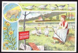 CHROMO Chocolat SUCHARD Signes Zodiaque Tierkreis Zodiac Taureau  Taurus   Oies Goose Serie 70 - Suchard