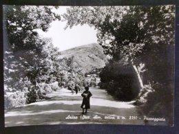SARDEGNA -NUORO -ARITZO -F.G. LOTTO N°580 - Nuoro