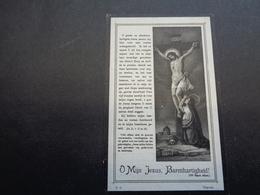 Doodsprentje ( 24 )  Desloover / Bergman - Lichtervelde  Meulebeke  1917 - Todesanzeige