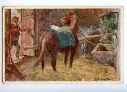 176252 HORSE & CAT Stable By Ludwig KOCH Vintage Colorful PC - Autres Illustrateurs