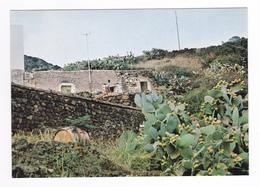 Sicilia Trapani Pantelleria Rakhali La Contrada Di Ali - Trapani