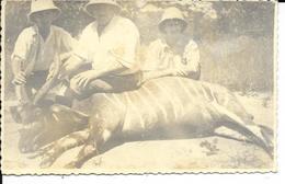Congo - Chasseurs / Chasseur - Antilope /Antilopes - 2 Scans - Jacht