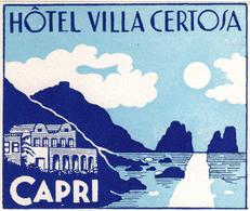 Capri - Italia Italy Italie - Hotel Villa Certosa - Luggage Label Etiquette Valise - Hotel Labels