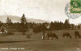 Montana Paysage Au Golf 2 Scans - VS Valais