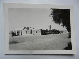 PHOTO ANCIENNE - ALGERIE : El Oued/Souf - Ville Située Dans Le Nord-est Du Sahara Algérien - Africa