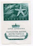 1952 Trieste B Mostra Capodistria Foglietto  N. 3   Nuovo MLH* - Trieste
