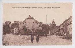 CPA Chauvirey-le-Chatel - Place De La Fontaine (avec Animation) - Other Municipalities