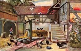 Ferme Elevage Poules Coq Fontaine..(1907) - Fermes