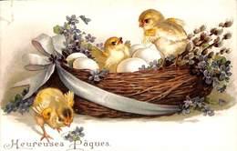 Heureuses Pâques - Poussins Fleurs Oeufs Colorisée Gauffrée - Pâques