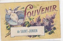 Haute-Vienne - Souvenir De Saint-Junien - Saint Junien