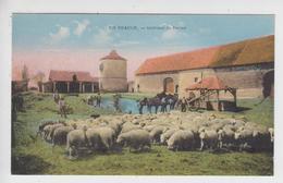 CPA En Beauce - Intérieur De Ferme - Ferme Du Plessis à St-Peravy-la-Colombe (troupeau De Moutons, Chevaux ...) - France