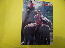 """Thailand """"  Elephant Trekking  Chiang Mai ( Hommes Sur Le Dos Des Elephants  ( Ecrite + Timbre ) - Elephants"""
