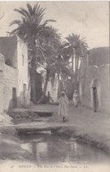 Algérie - Biskra - Une Rue De L'Oasis Bab-Darb - Biskra