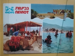 Kov 511-1 - ISRAEL, NEVIOT, PLONGEE, DIVING, DIVE, CAMEL - Israel