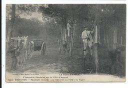 Arcachon Resigniers Dans La Foret Du Pilat - Arcachon