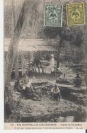 NOUVELLE CALEDONIE. CPA Voyagée En 1905 Dans La Brousse - Nouvelle Calédonie