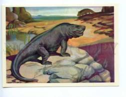 237816 RUSSIA Chevereva Dinosaurs Inostrancevia Old Postcard - Other Illustrators