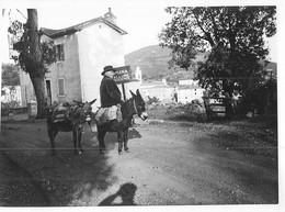 Photo Ancienne Circa 1931 Corse Un Local Avec Ses ânes Lieu  à Identifier - Lieux