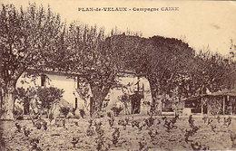 13 - PLAN-de-VELAUX - Campagne CAIRE - - Frankrijk