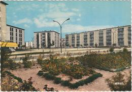 4G - COULOMMIERS Les HLM  (CPSM: 15x10.5cm) - Coulommiers