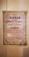 RUSSIE SOCIETE RUSSE D'ASSURANCES CONTRE L'INCENDIE 1870 ACTION - Shareholdings