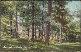 Ambresbury Banks, Epping Forest, Essex, 1908 - Wildt & Kray Postcard - England