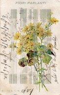 FIORI PARLANTI - FORMATO PICCOLO (retro Indiviso) - VIAGGIATA (rif. C30) - Bloemen, Planten & Bomen