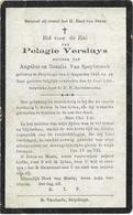Doodsprentje  *  Versluys Pelagie (° Sleydinge 1843 / +  1919)  Dochter Angelus Versluys & Van Speybroeck Rosalia - Religion & Esotérisme