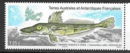TAAF ,  FRENCH ANTARCTIC, 2020, MNH, MARINE LIFE, FISH, 1v - Peces