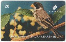 BRASIL J-503 Magnetic Teleceara - Animal, Bird - Used - Brasilien