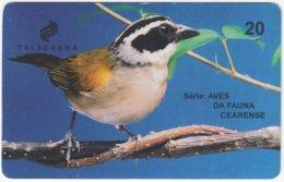 BRASIL J-509 Magnetic Teleceara - Animal, Bird - Used - Brasilien