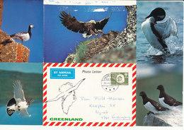 Greeenland Photoletter Sent To Denmark Holsteinsborg 21-1-1980 - Greenland