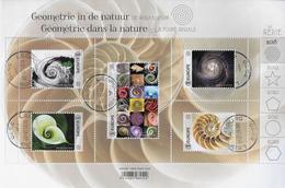 Geometrie In De Natuur Spiraalvormen - Bélgica
