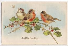 AN 416,  OLD  FANTASY POSTCARD  , BIRDS ,FINE ART , PAINTINGS , - Oiseaux
