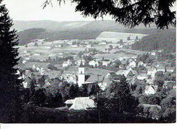 QSL - GERMANY - DC1GM - HERMANN MÜLLER - LENZKIRCH - 1972 - Radio-amateur