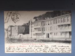 Souvenir Du Bosphore- Ambassade  De France à Thérapia - Turquie